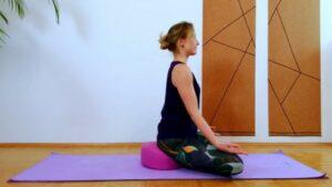 Raja Yoga swami